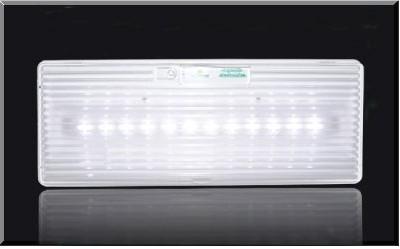 Φωτιστικό Ασφαλείας GR-310/12led/180