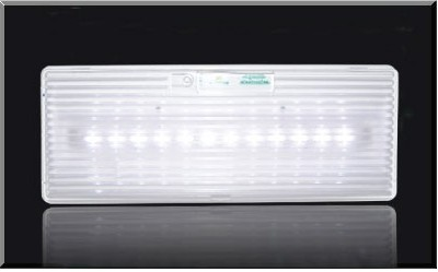 Φωτιστικό ασφαλείας GR-312/15led και GR-312/30led